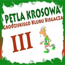 Pętla Krosowa